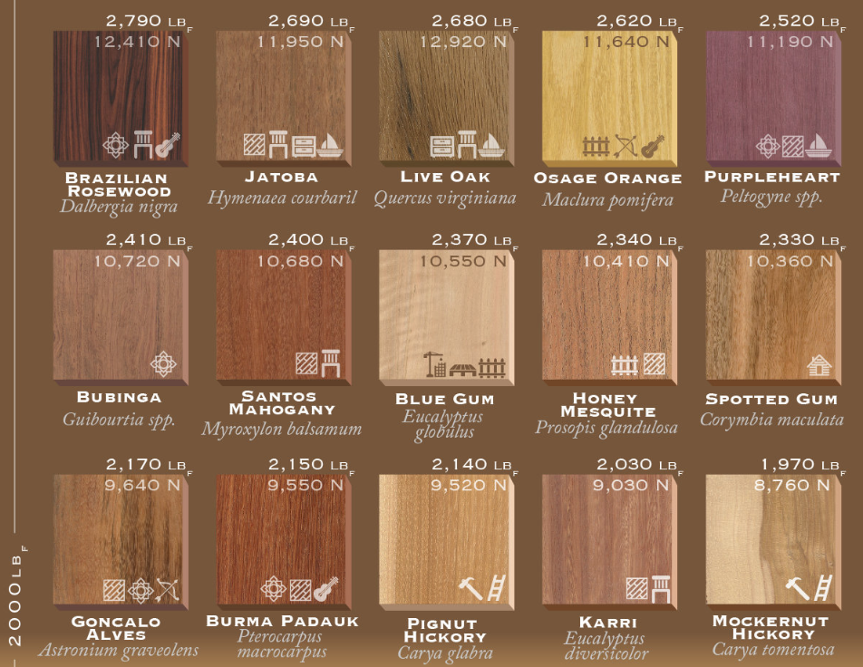 This Wood Hardness List Ranks 75 Types Of Wood By Their Janka Rating Explore Our Wood Density Chart To See Which H Types Of Wood Types Of Hardwood Floors Wood