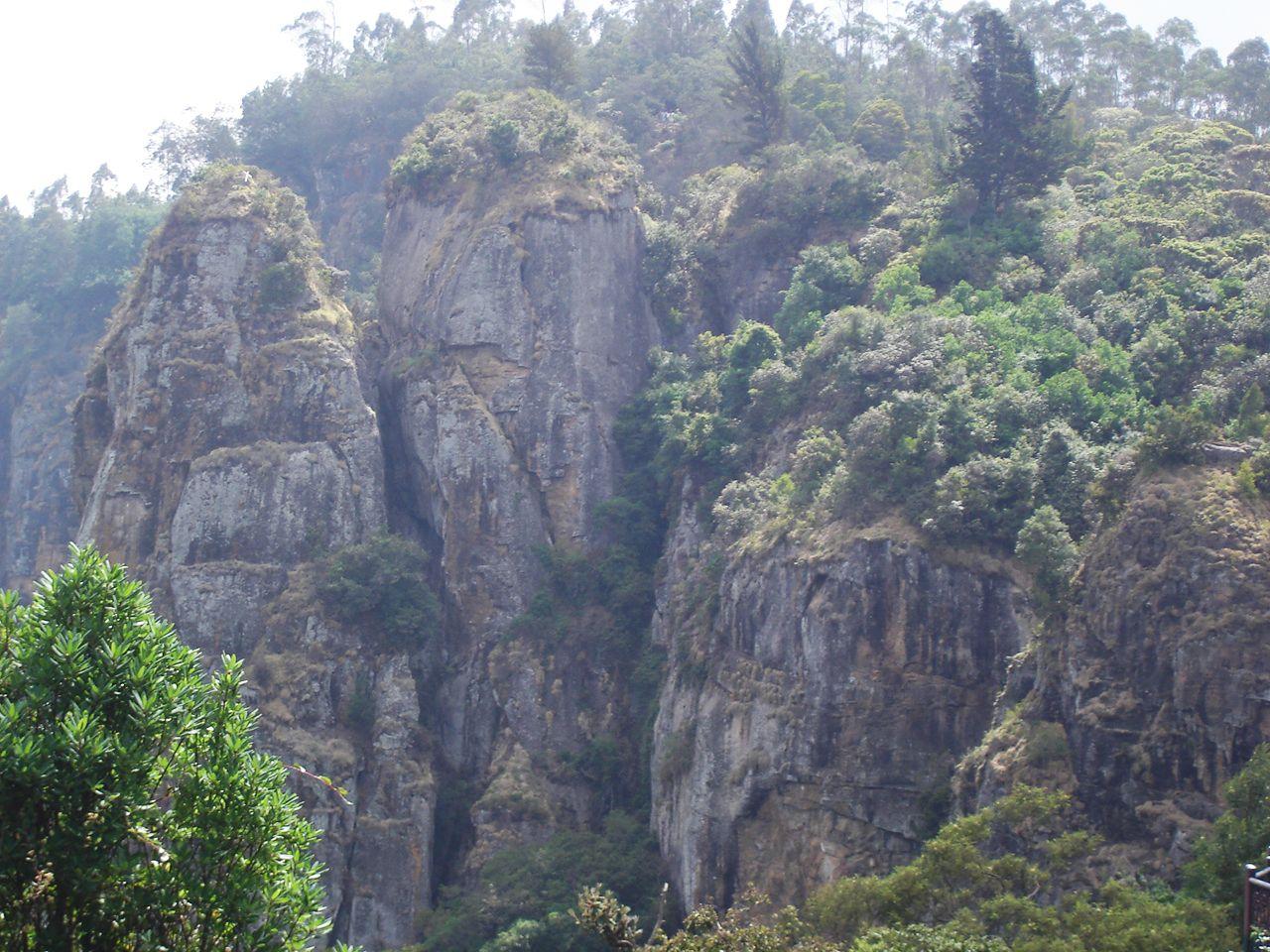 Kodaikanal, India Pillar Rocks Kodaikanal, Forest
