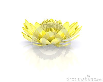 Golden lotus flower water lily by Charon, via Dreamstime