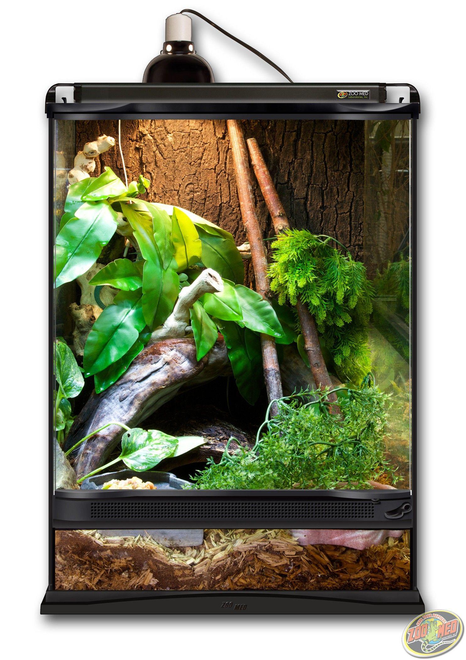 12x12x18 Zoo Med Terrarium Setup As A Forest Habitat Diy