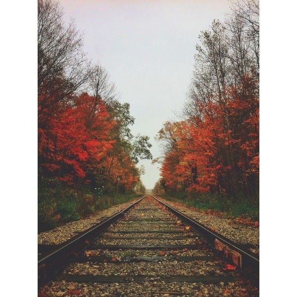 May These Memories Break Our Fall... ❤ liked on Polyvore featuring backgrounds and photos