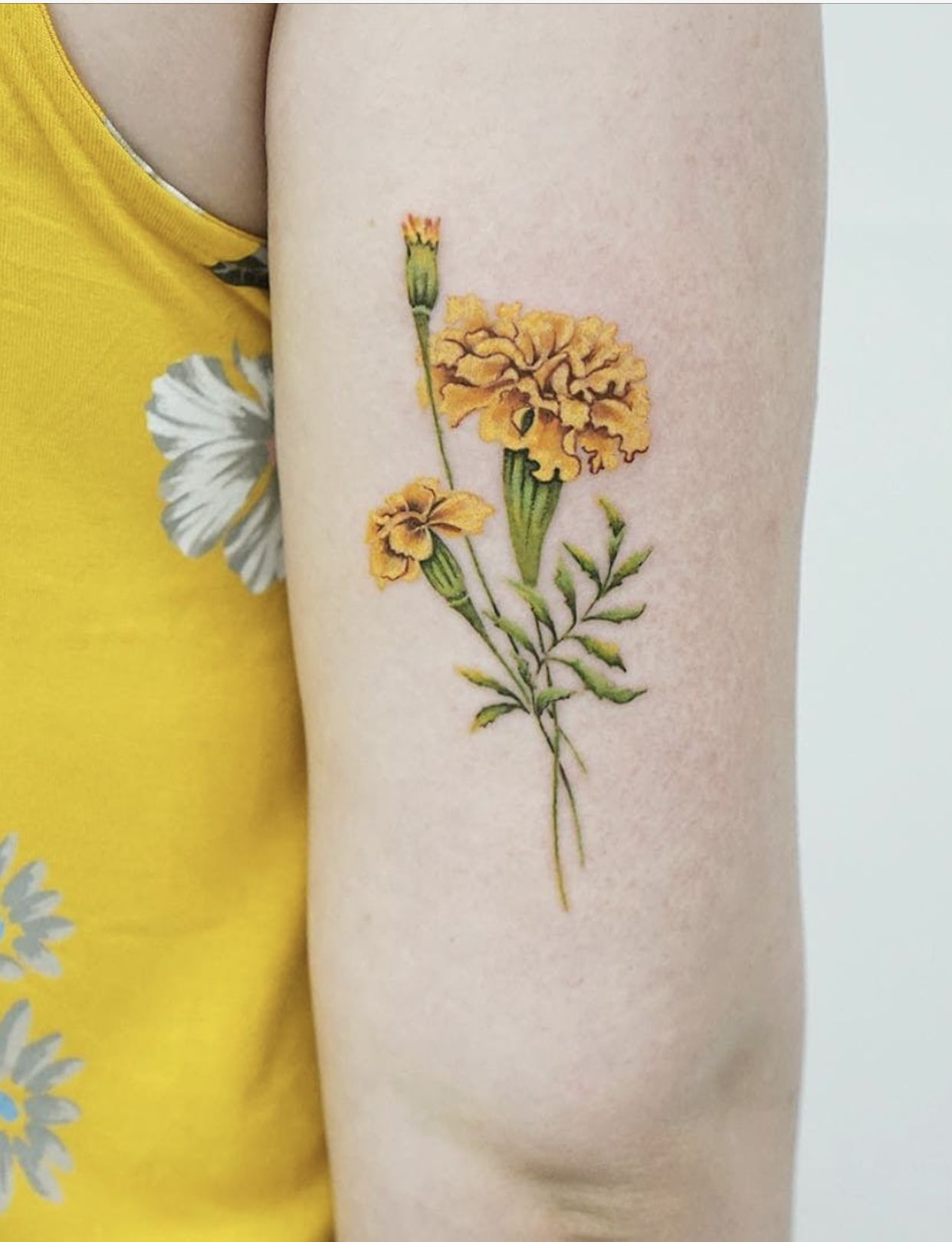 Pin by Melissa Alcott on Inkspiration in 2020 Marigold