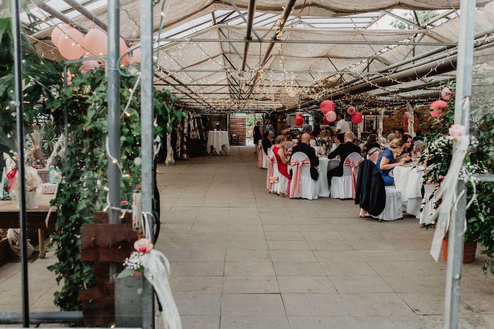 Sommerhochzeit Im Biodom Esslingen Hochzeitsfotograf Esslingen Sommerhochzeit Hochzeitsfotograf Hochzeit