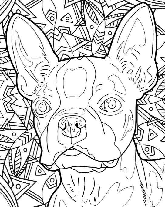 Best Coloring Books For Dog Lovers Dog Coloring Book Dog Coloring Page Coloring Books