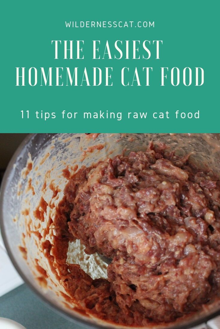 How to Make Raw Cat Food 11 Hacks to Make it Easy