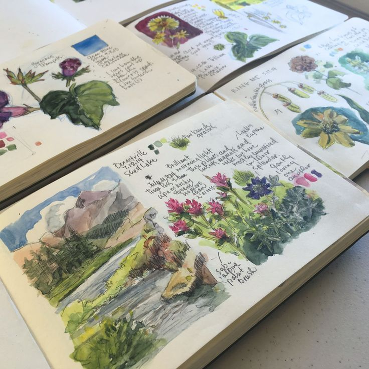travel art journal Kit is part of My Travel Art Journal Kit Lindsaybraman Com - Landscape sketchbook with wildflower detail