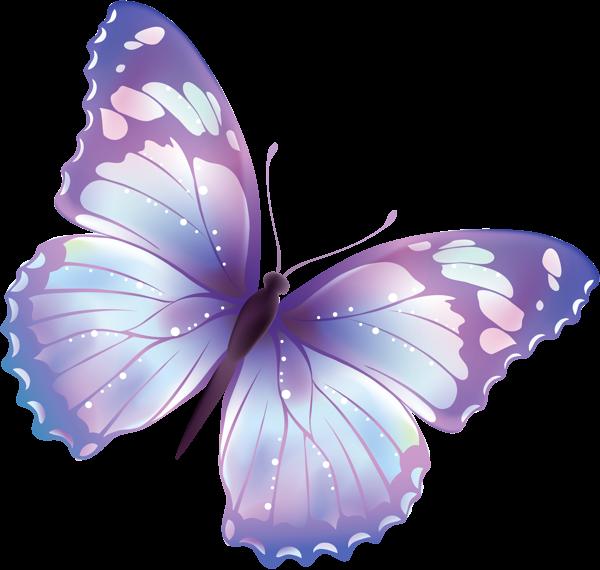 mariposa grande transparente png clipart bellas