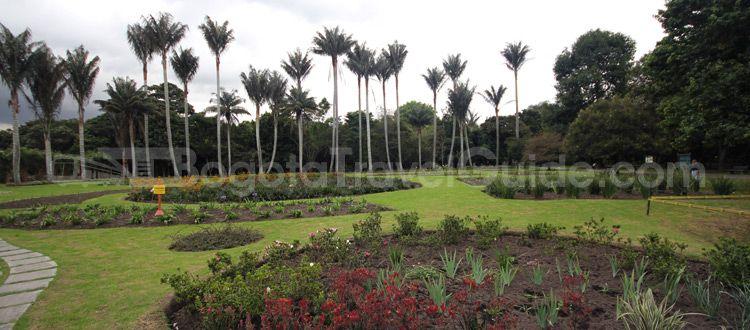 Jardin Botanico de Bogota Jose Celestino Mutis | Jardín Botánico ...