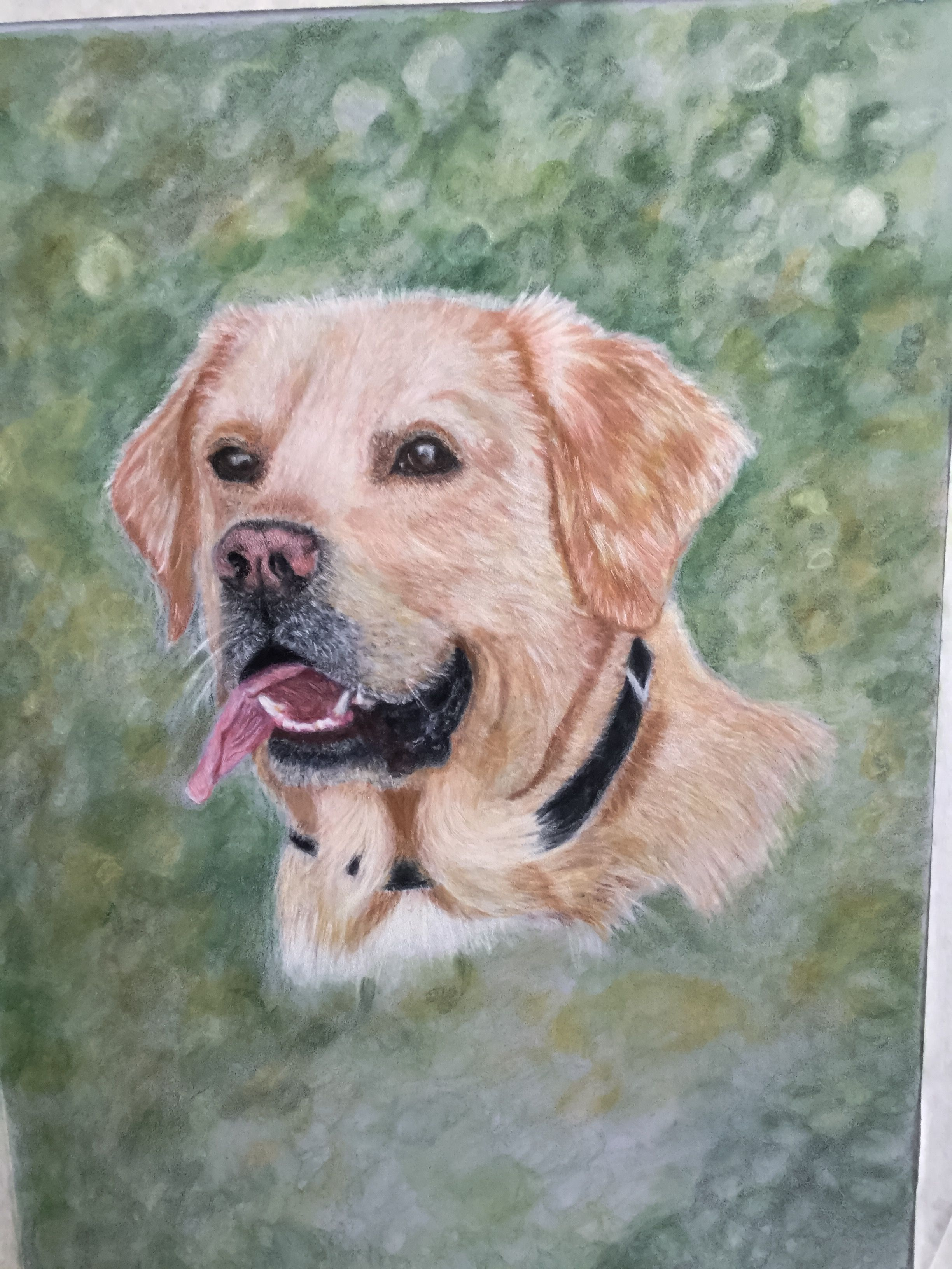 Pin on colored pencils Art
