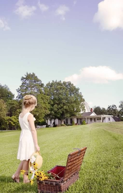 A S W Classics Anne Of Green Gables Inspired Photo Shoot C Amber S Wallace Photography Anne Of Green Gables Green Gables Green