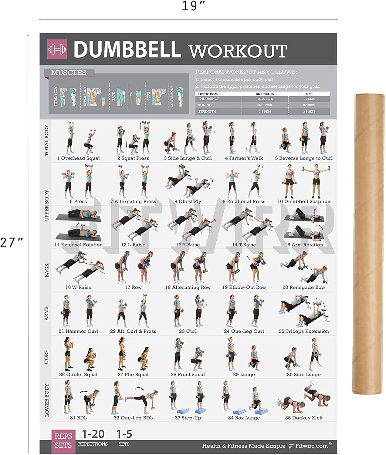 8cd905b7b6c Amazon.com   Dumbbell Workout Exercise Poster LAMINATED - Strength Training  Exercises for Legs - Home Gyms - Personal Fitness Trainer - Total Body  Workout ...
