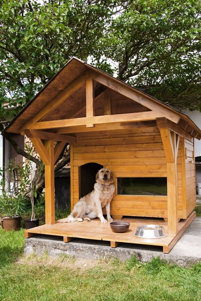 That Is One Huge Dog House The Homeowners Might Want To Measure