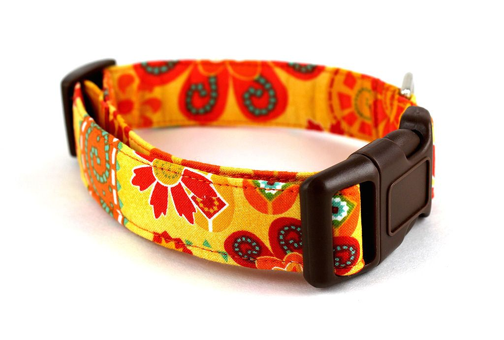 Aztec Sun dog collar by Bow Wow Couture. Love. $17.95