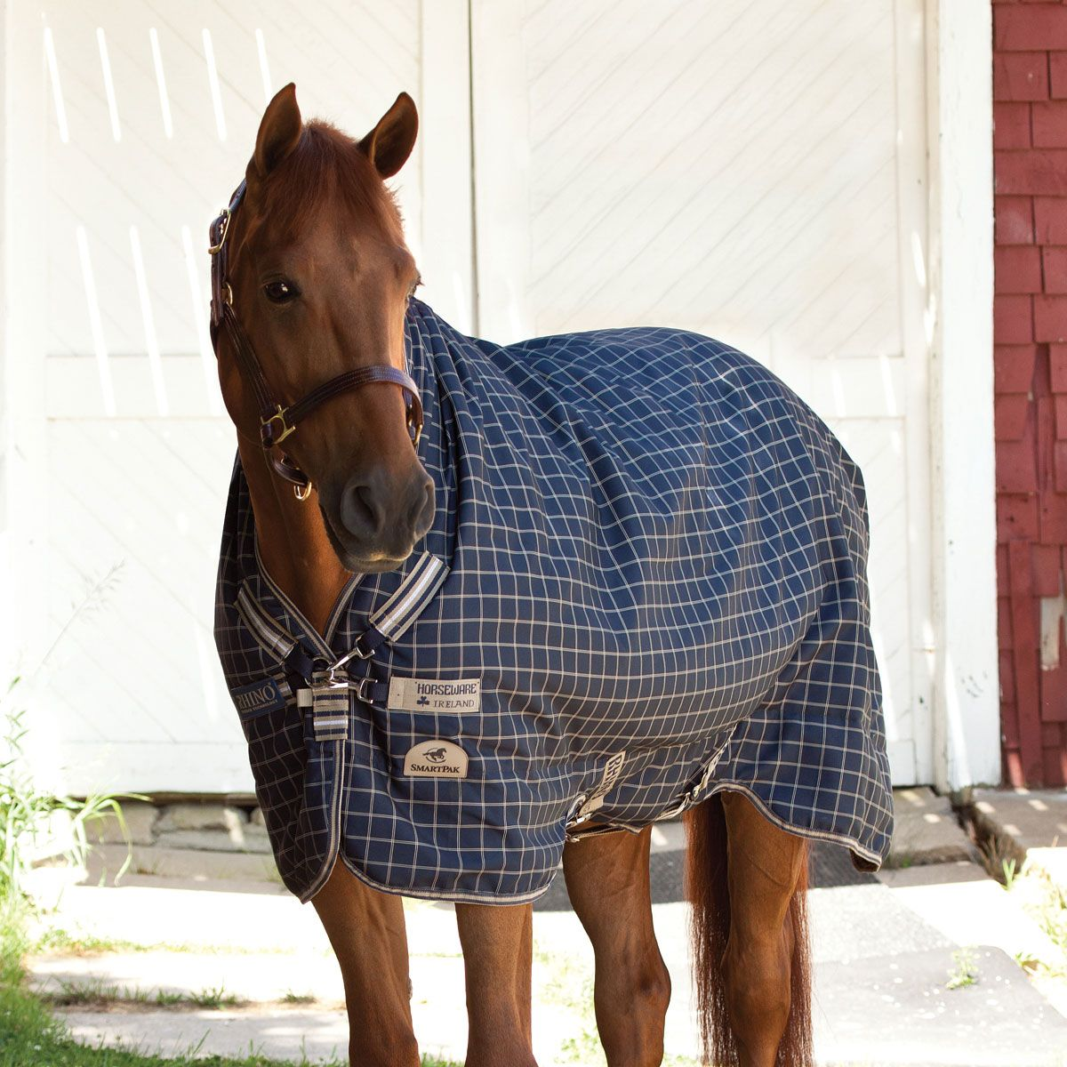 Rhino Smartpak Collection Wug Turnout I Want One So Bad Have To Sell The Rambo First Though Smartpak Smartpak Equine Horse Blankets