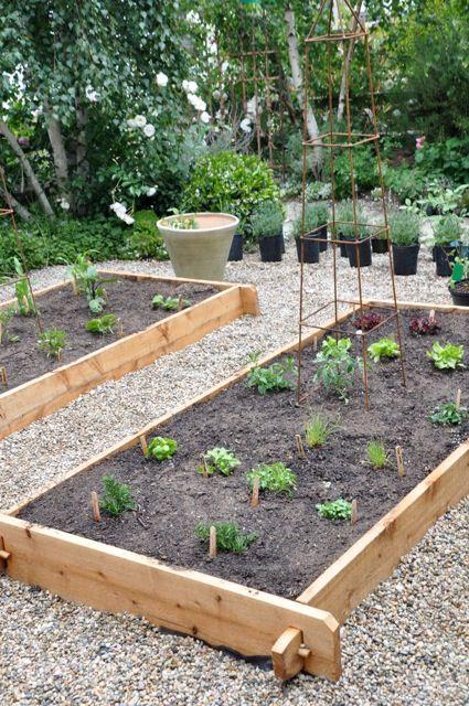 our kitchen garden  sloped garden building a raised