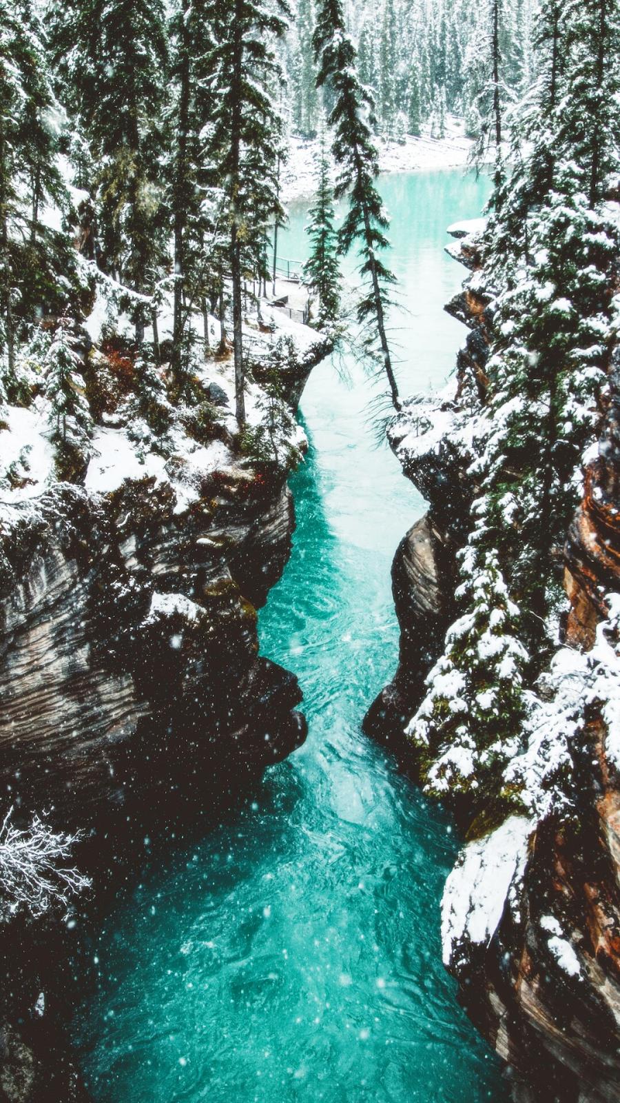 Green lake on winter #winterwallpaper
