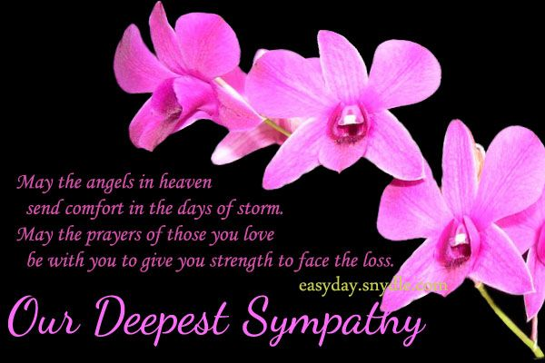 Sympathy Card Messages For Loss Of Loved Ones Sympathy Card
