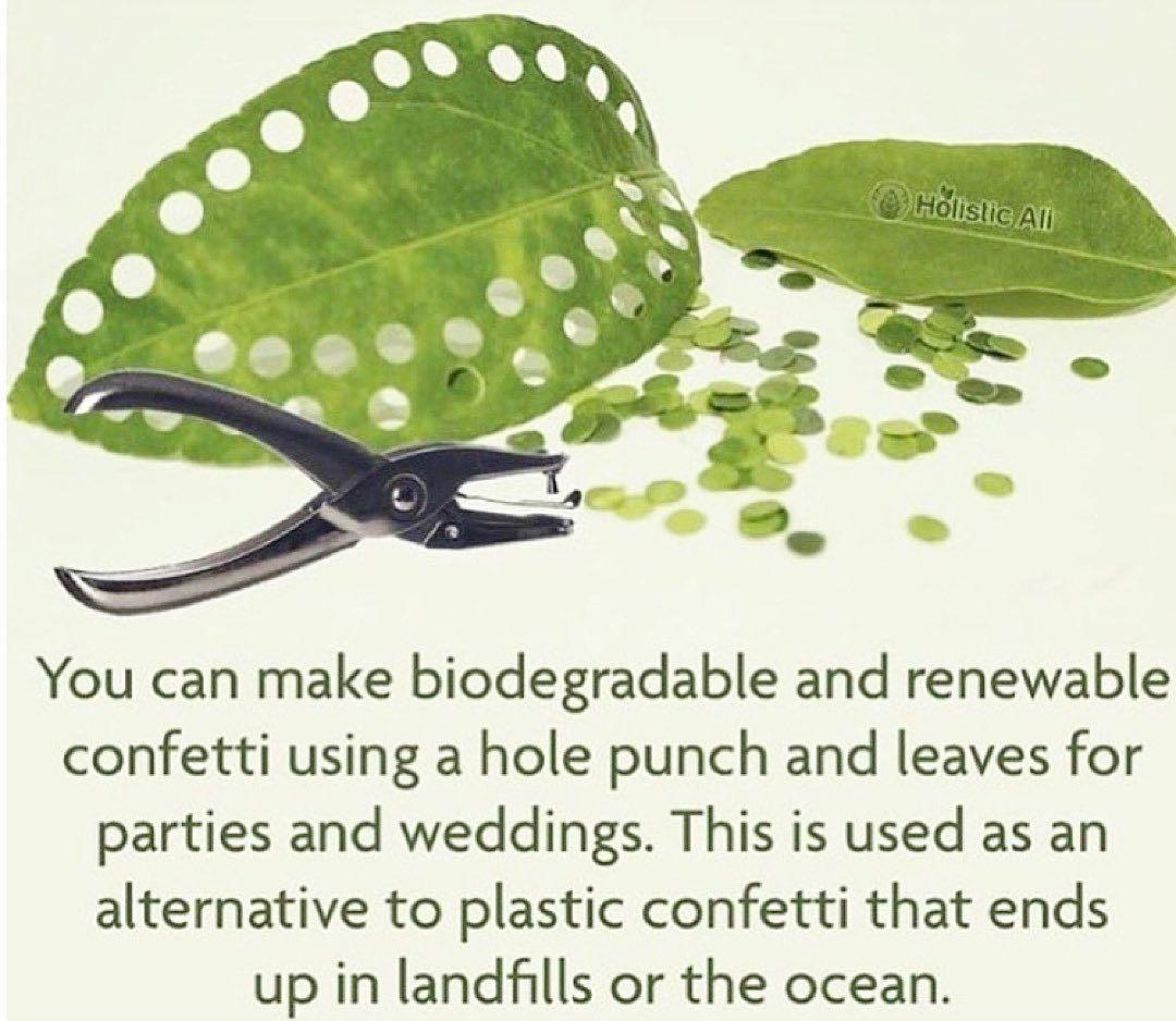 biologisch abbaubare konfetti 😍 jeder liebt einen guten