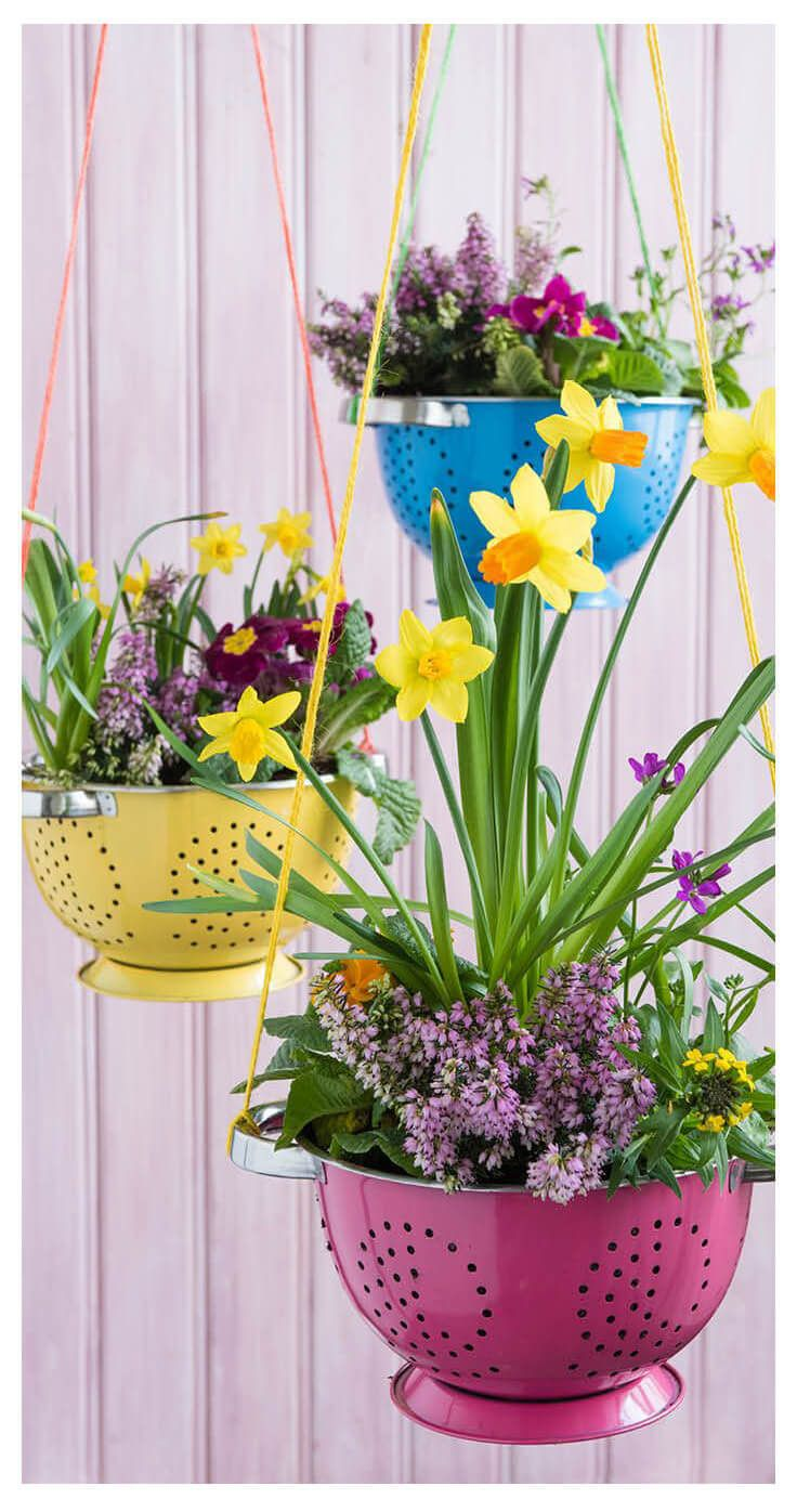 Photo of Colorful Colander Springtime Hanging Planters