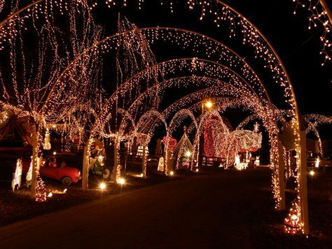 the best christmas light shows are right down the road - Best Christmas Lights In Nc