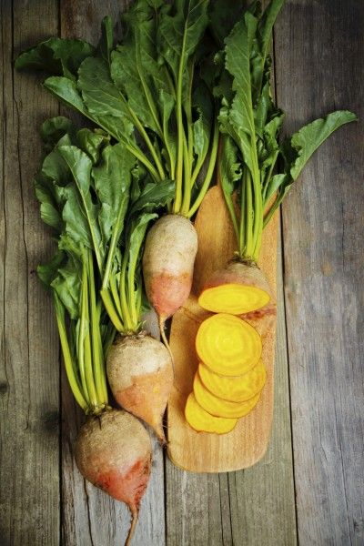 Growing Golden Beets Tips On Caring For Golden Beet Plants