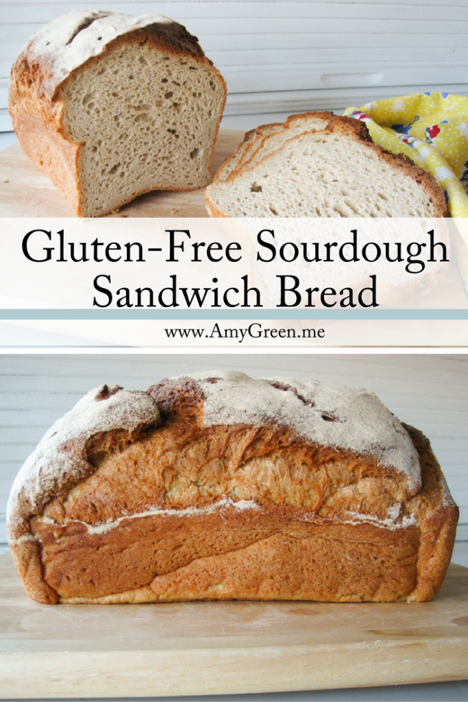 Sandwich Bread With Sourdough Starter Recipe Gluten Free Recipes Bread Recipes Gluten Free Bread Recipe Easy
