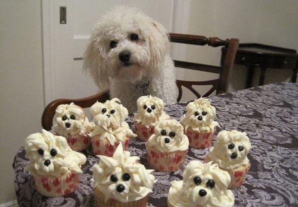 Doggy Cupcakes Lookalike