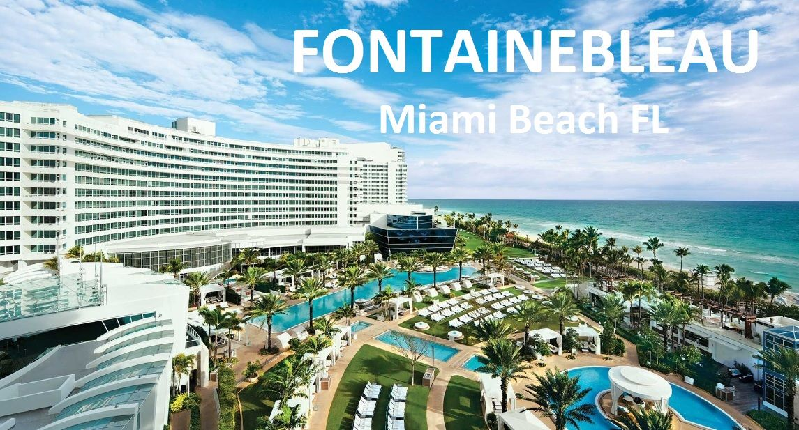 Hotels On Collins Avenue Miami South Beach Newatvs Info