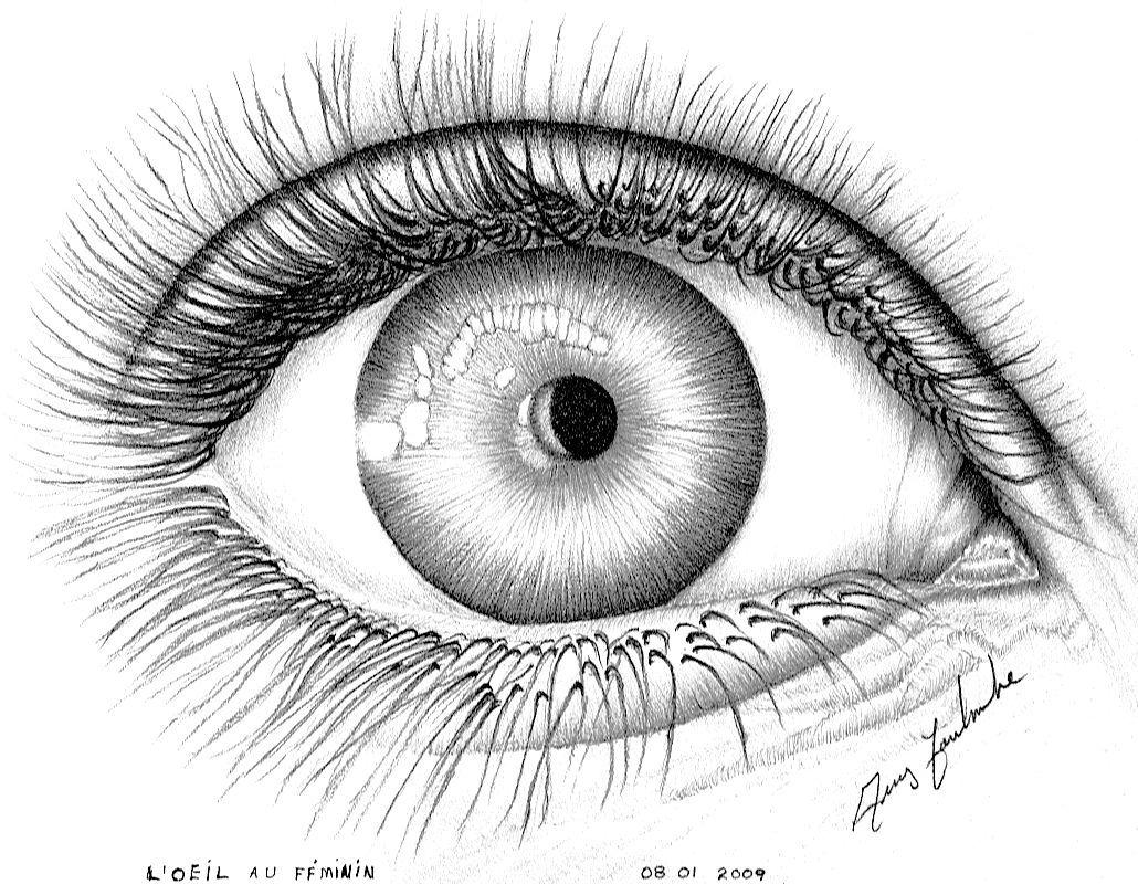 Dessin l 39 oeil au f minin dessin - Trop beau dessin ...