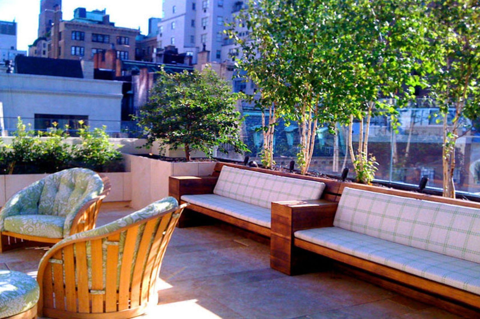 Nyc Contemporary Roof Deck Bamboo Birch Tree Terrace Home Garden Design Roof Garden Design Limestone Patio