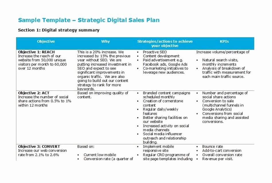 Sales Business Plan Template New Template Lab Best