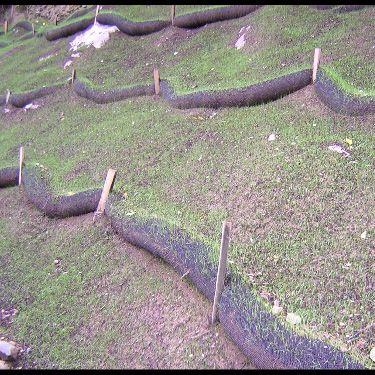 Slope Interruption Storm Water Managment Silt Fence Replacement Vegetation Establishment Vegetation Erosion Control Green Thumb
