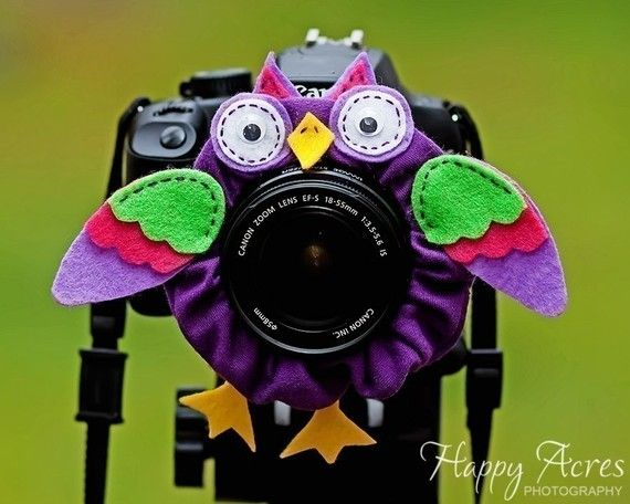 Look at the birdie!! What a great idea for when shooting kids!