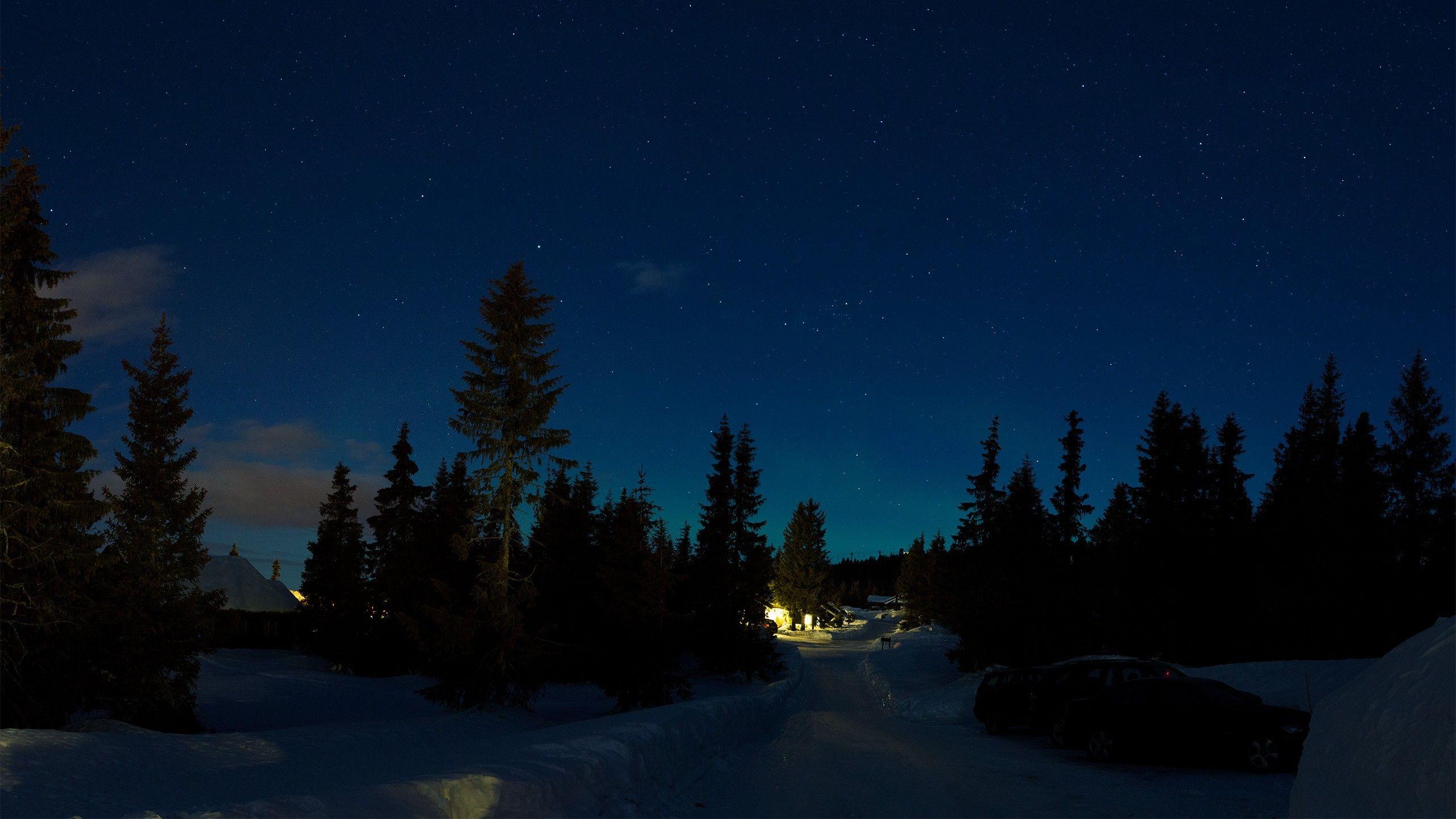 Обои На Рабочий Стол Зима Ночью