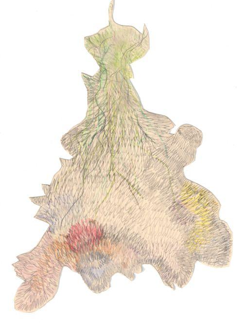 Josefina Concha, dibujo sobre tela