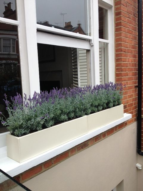 Cream Windowboxes Filled With Faux Lavender Plants For A Fresh Spring Sumer Look Window Boxes Window Box Flowers Window Planters