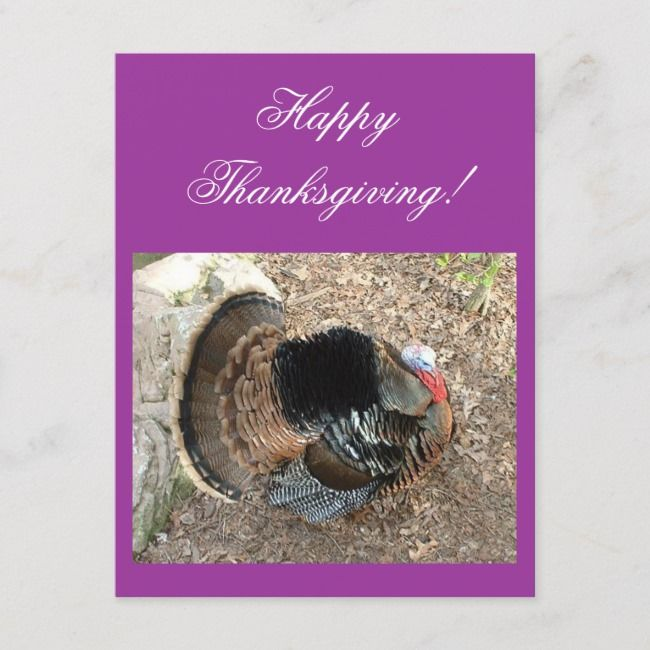 Happy Thanksgiving  Thanksgiving card