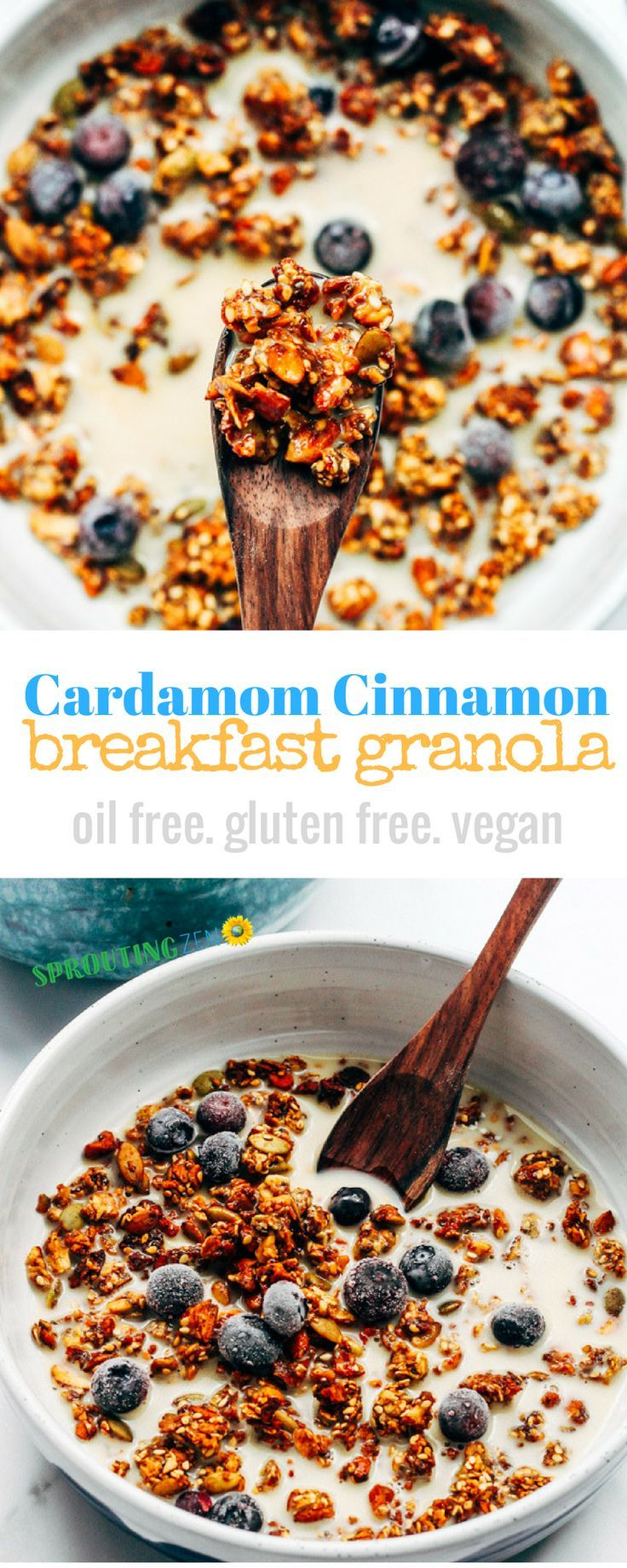 Oil Free Cozy Cardamom Cinnamon Breakfast Granola