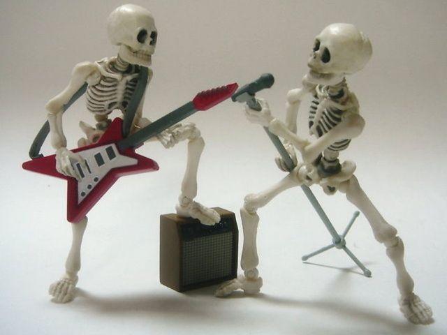 Pose skeleton accessories Good night set Japan free ship
