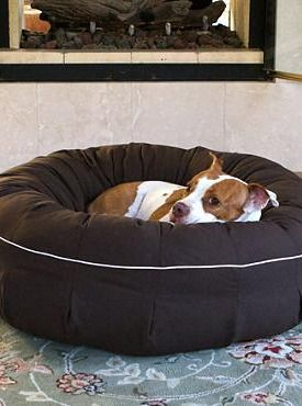 Your best friend will love snuggling up atop the Animals Matte® L.A. Dog Dreamer Dog Bed that features an overstuffed memory fiber fill cushion and soft micro-twill cover that resists stains.