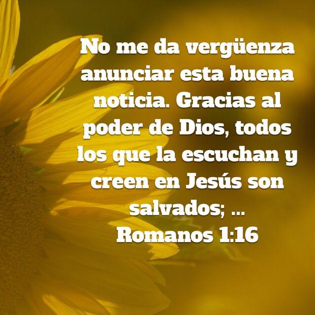 Pin By Esther Andrade On Reflexión Herbs Bible