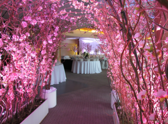 Mulan Theme! (With images) | Cherry blossom wedding decor, Cherry ...