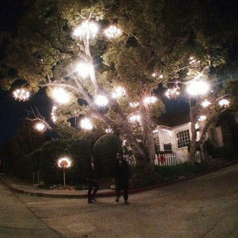 Chandelier Tree - Los Angeles, CA, United States. Full view of the ...