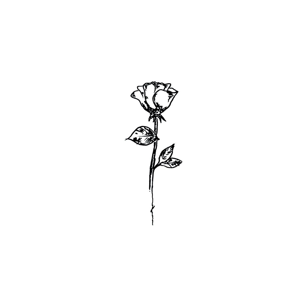 Rose Wildflower Minimalsit Tattoos Rose Tattoos Body Art Tattoos