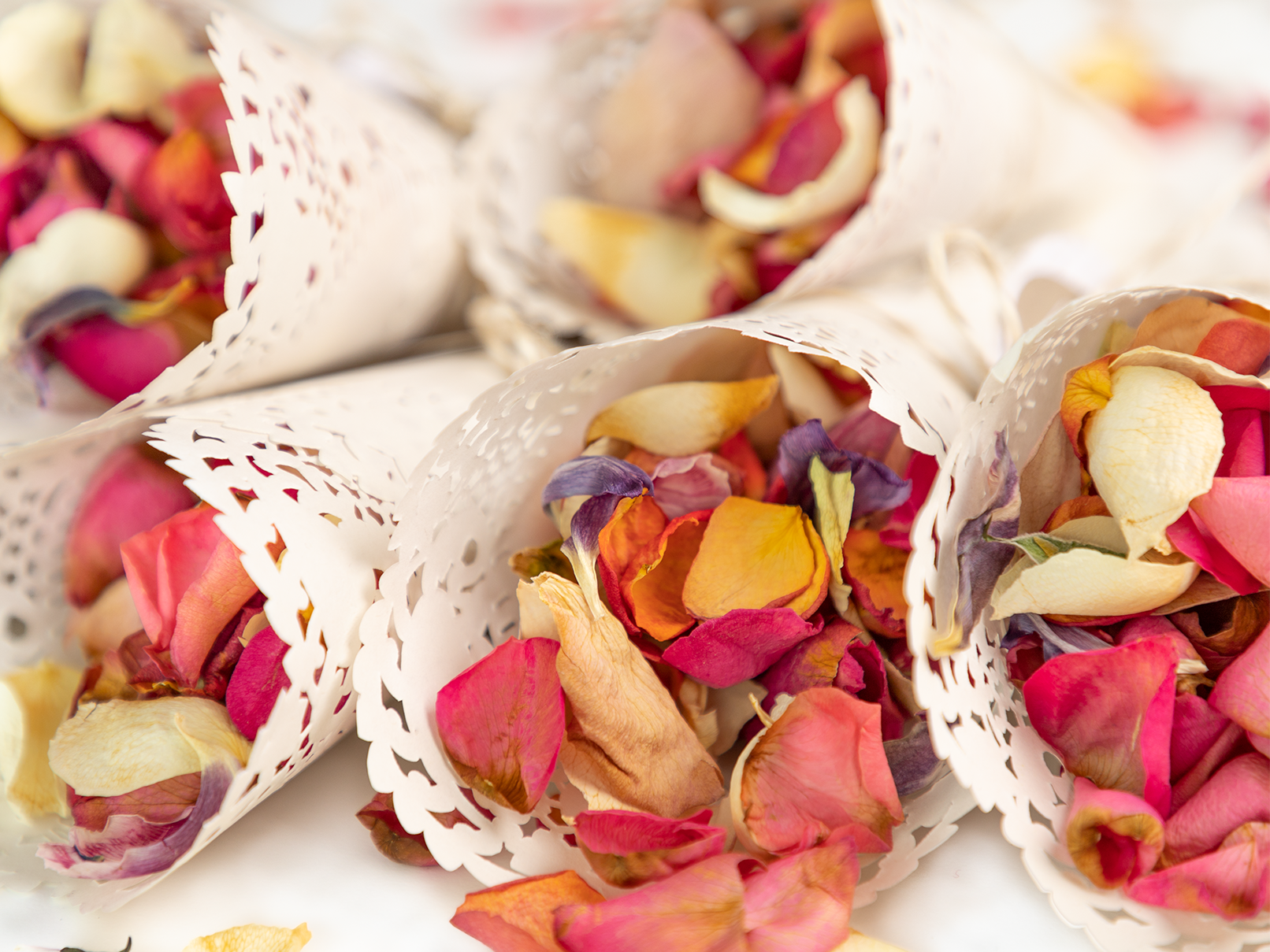 Blumenkinder Fur Die Hochzeit Tipps Und Tricks Hochzeit Blumenkinder Blumen
