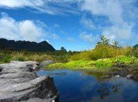 Parque natural Purace, Andes