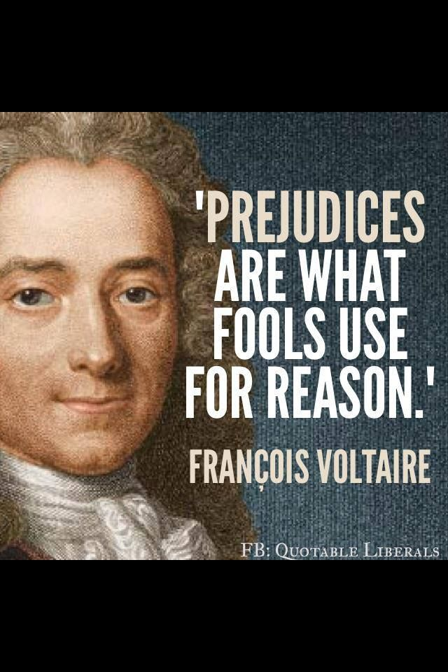 Prejudice Wise Words Pinterest Quotes Voltaire Quotes And Wisdom Impressive Quotes Voltaire