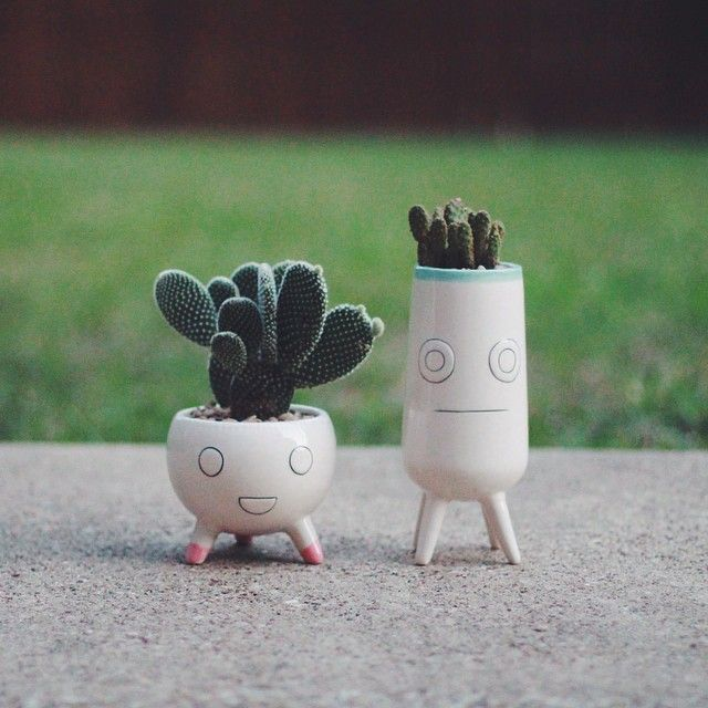 Cute plant pot decorations. Ideal for a little added greenery in small apartments