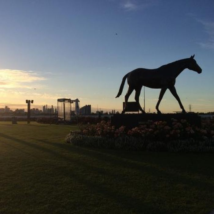 The 2014 Melbourne Cup gave us the best and worst of this confounding pursuit called the turf. Does it all come down to chance, fate, luck? Or is horseracing fatally flawed and in desperate need of renovation? 5 November 2014.