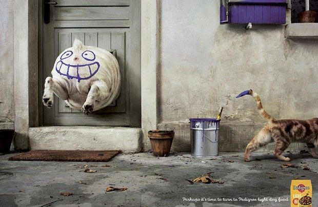 Ad Of The Day Pedigree Light Dog Food Smiling Face Funny